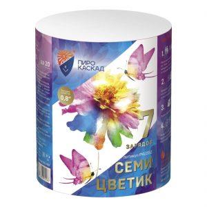 Салют Семи Цветик